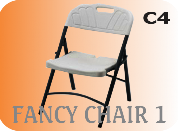 fancy chair 1 image